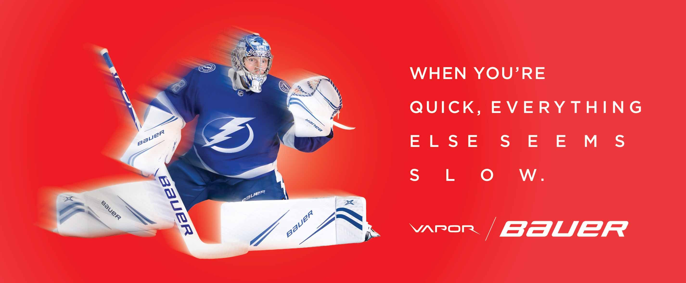Bauer Vapor Goalie Season 19